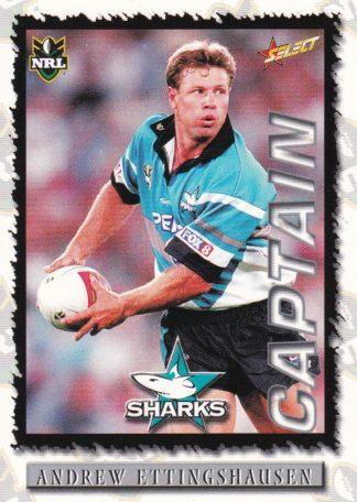 2000 Sharks