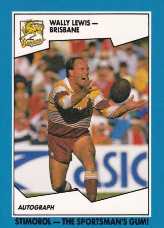 1989 Scanlens NSW Rugby League